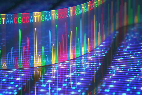 遺伝子のイメージ写真